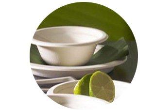 Assiette pulpe canne fibre bio et ecologique