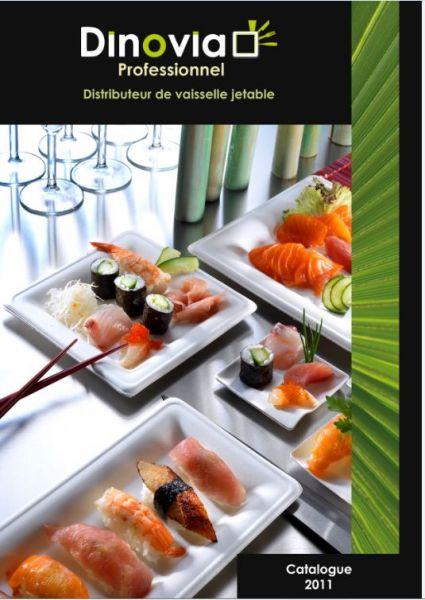 catalogueprofessionneldinoviapro.jpg